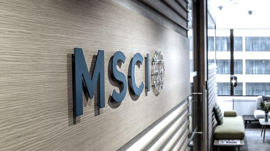 2012 Q4 - Investment Letter (MSCI)